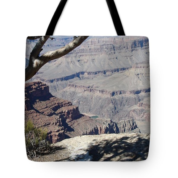 Tote Bag featuring the photograph Grand Canyon by David S Reynolds