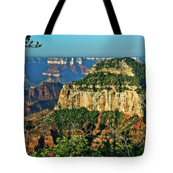 Tote Bag featuring the photograph Grand Canyon Peak Angel Point by Bob and Nadine Johnston