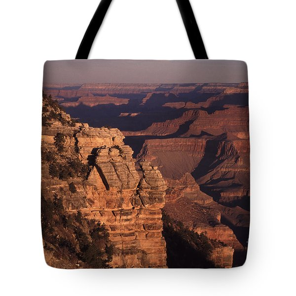 Tote Bag featuring the photograph Grand Canyon Sunrise by Liz Leyden