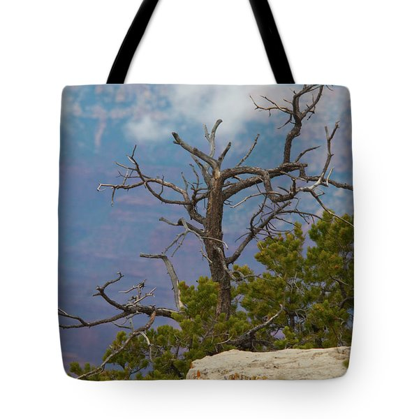 Tote Bag featuring the photograph Grand Canyon Tree by Rod Wiens