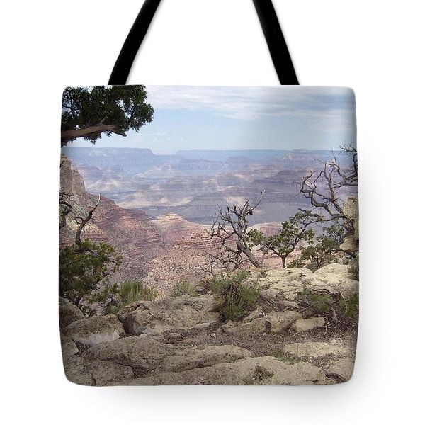 Grand Canyon View 4 Tote Bag
