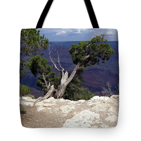 Grand Canyon View 5 Tote Bag