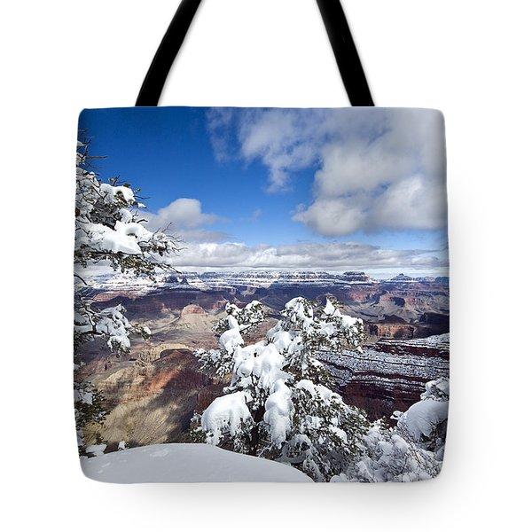 Grand Canyon Winter - 1 Tote Bag