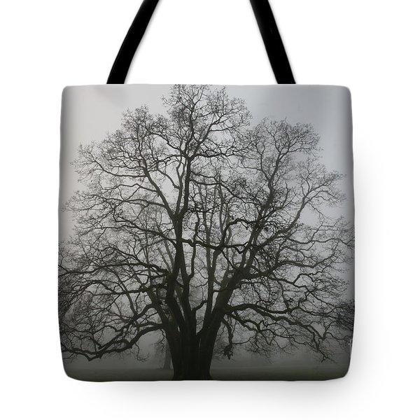 Grand Oak Tree Tote Bag