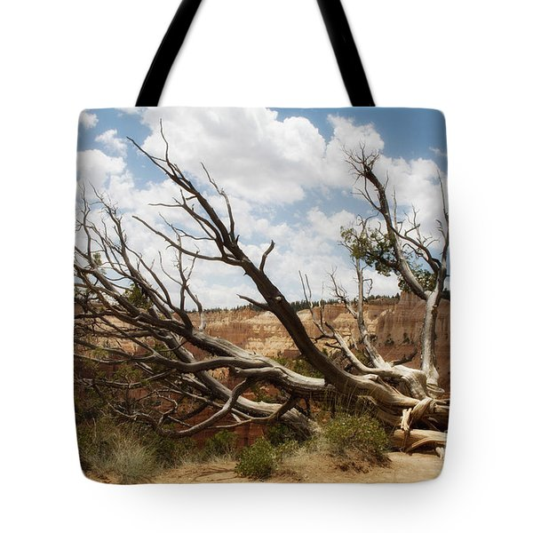 Tote Bag featuring the photograph Grandfather Tree by Angelique Olin