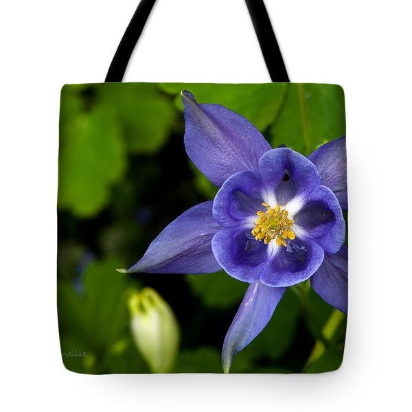 Granny's Nightcap Tote Bag