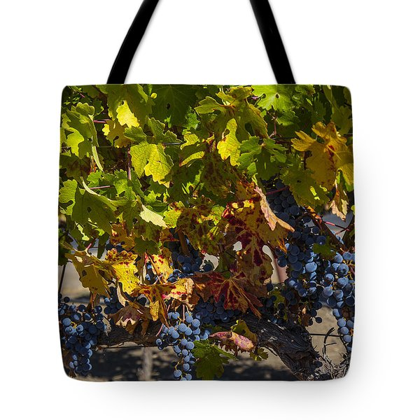 Grape Harvest Tote Bag by Garry Gay