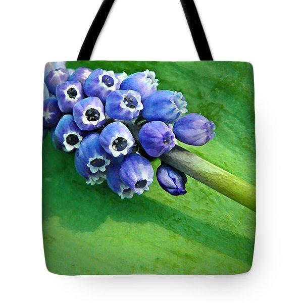 Grape Hyacinth Spike  Tote Bag by Chris Berry