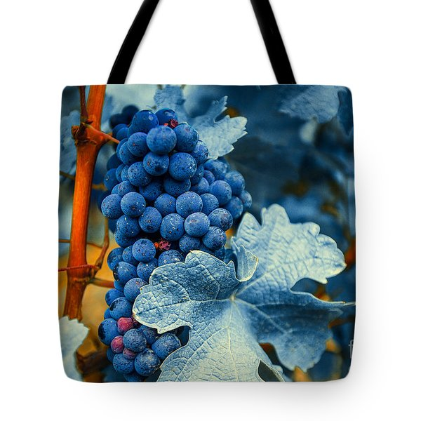 Grapes - Blue  Tote Bag by Hannes Cmarits