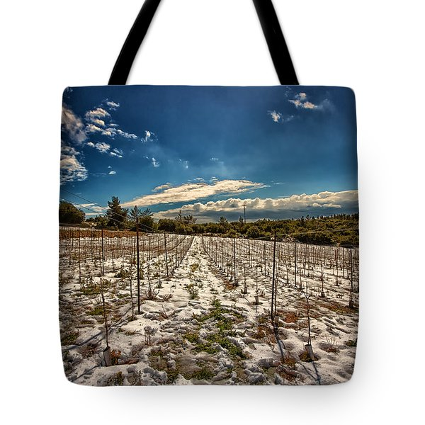 Grapes In Snow Tote Bag