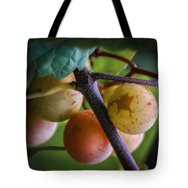 Grapes With Color Tote Bag by James Barber