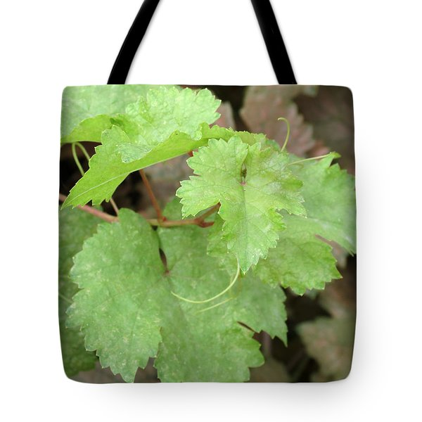 Grapevine Tote Bag by Laurel Powell