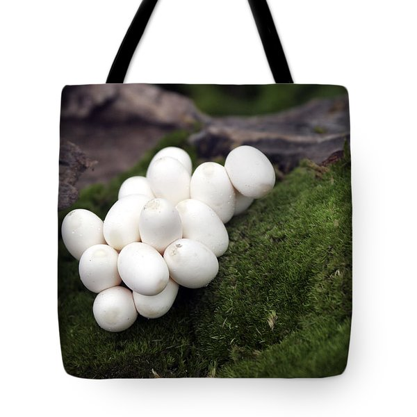 Grass Snake Eggs Tote Bag