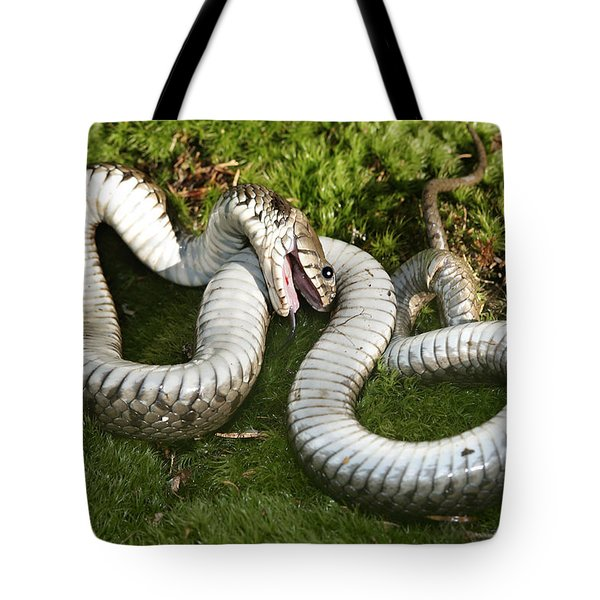 Grass Snake Playing Dead Tote Bag