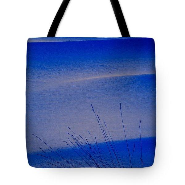 Grasses And Twilight Snow Drifts Tote Bag by Irwin Barrett