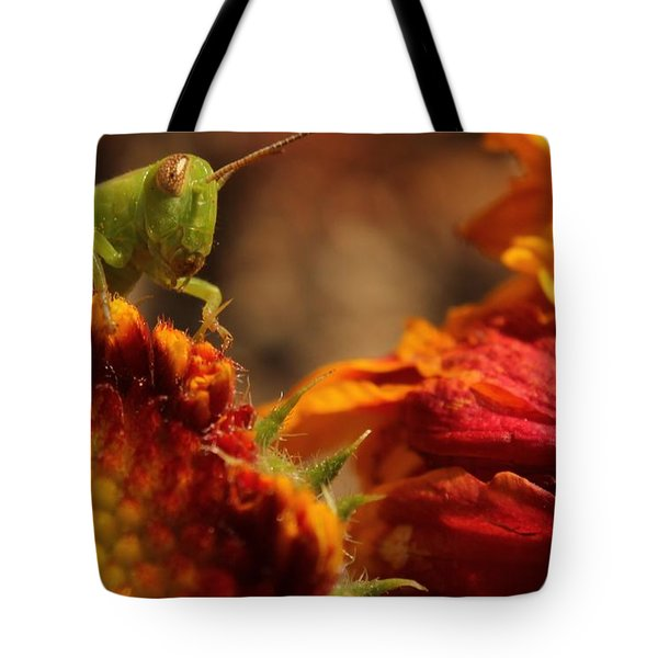 Grasshopper In The Marigolds Tote Bag