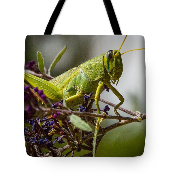 Tote Bag featuring the photograph Grasshopper by Janis Knight