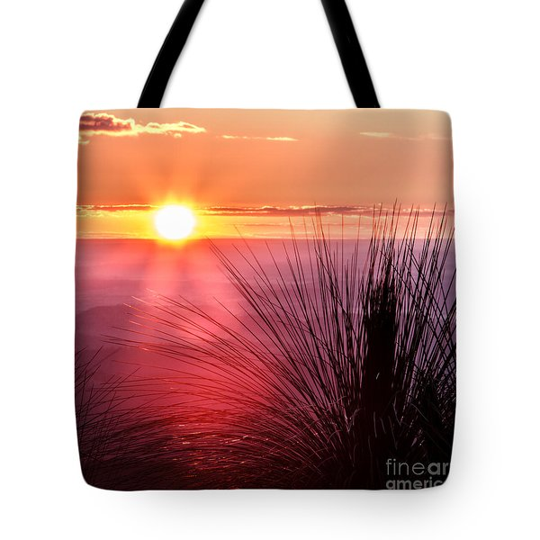 Tote Bag featuring the photograph Grasstree Sunset by Peta Thames