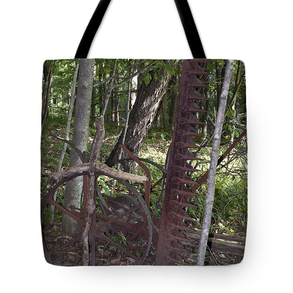 Grave Site Tote Bag by Tara Lynn