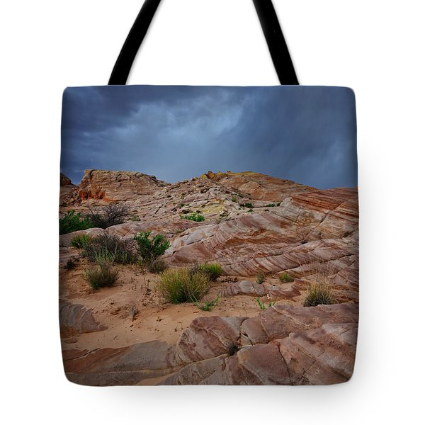 Gray And Red In The Valley Of Fire Tote Bag