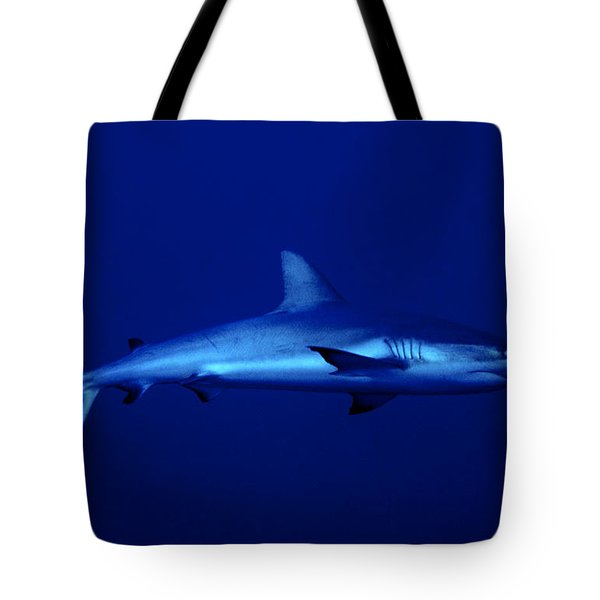 Gray Reef Shark Tote Bag