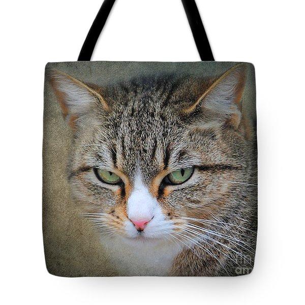 Gray Tabby Cat Tote Bag by Jai Johnson