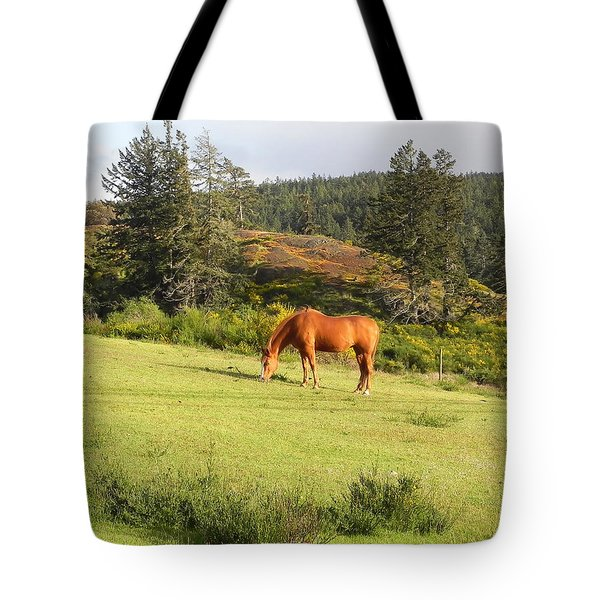 Tote Bag featuring the photograph Grazing by Cheryl Hoyle
