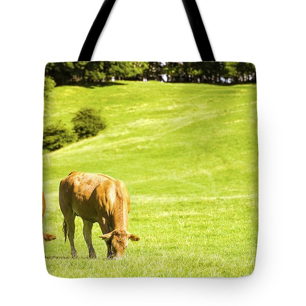 Grazing Cows Tote Bag by Amanda Elwell