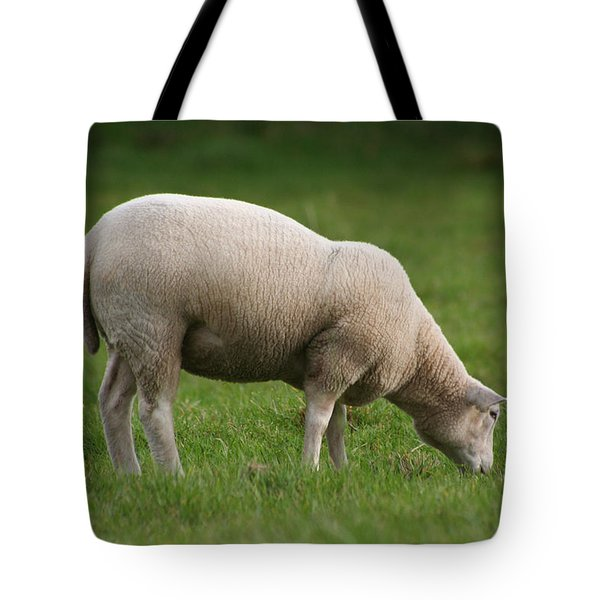 Grazing Sheep Tote Bag