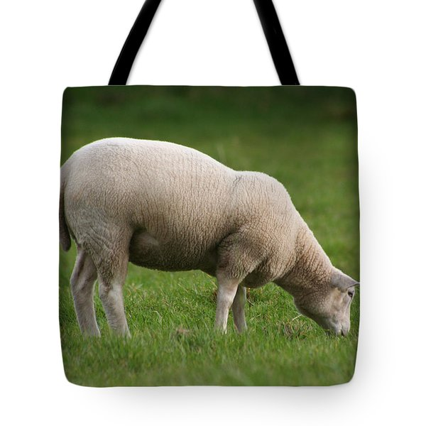 Grazing Sheep Tote Bag