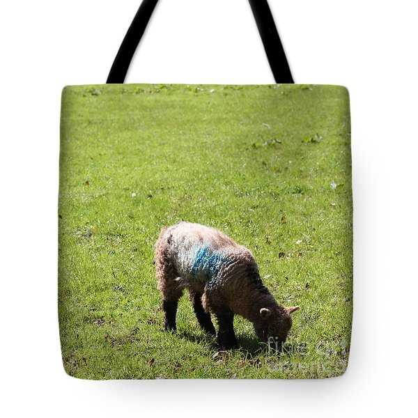 Grazing Tote Bag by Vicki Spindler