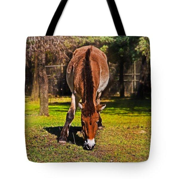 Grazing With An Attitude Tote Bag by Miroslava Jurcik