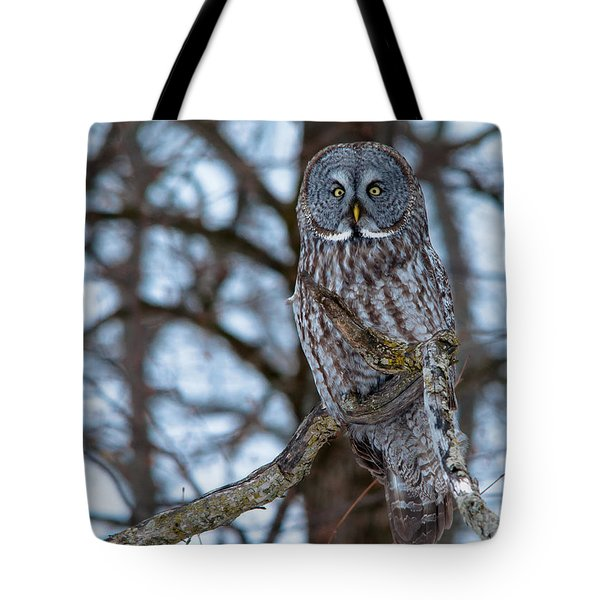 Great Beauty Tote Bag by Cheryl Baxter