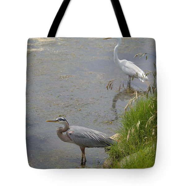 Tote Bag featuring the photograph Great Blue And White Egrets by Judith Morris