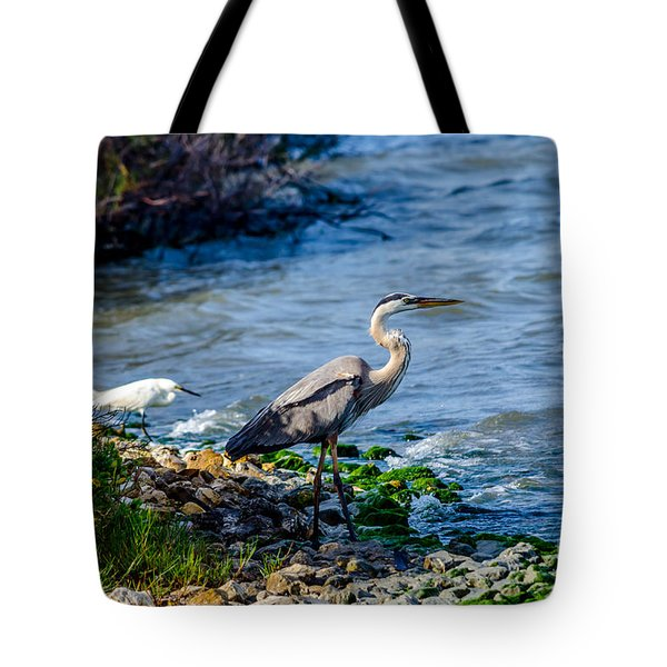 Great Blue Heron And Snowy Egret At Dinner Time Tote Bag
