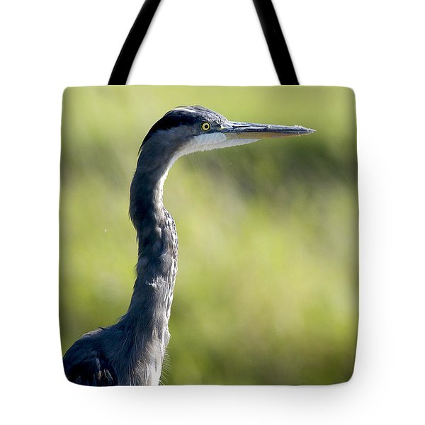 Great Blue Heron Backlit Tote Bag by Sharon Talson