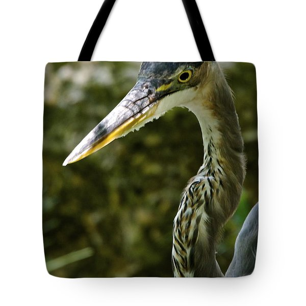 Tote Bag featuring the photograph Great Blue Heron by Dee Dee  Whittle