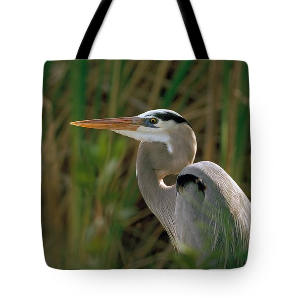 Tote Bag featuring the photograph Great Blue Heron by Doug Herr