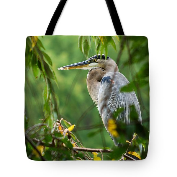 Great Blue Heron Tote Bag by Eva Kaufman