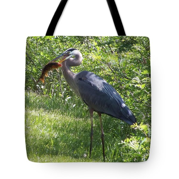 Great Blue Heron Grabs A Meal Tote Bag by Christina Shaskus