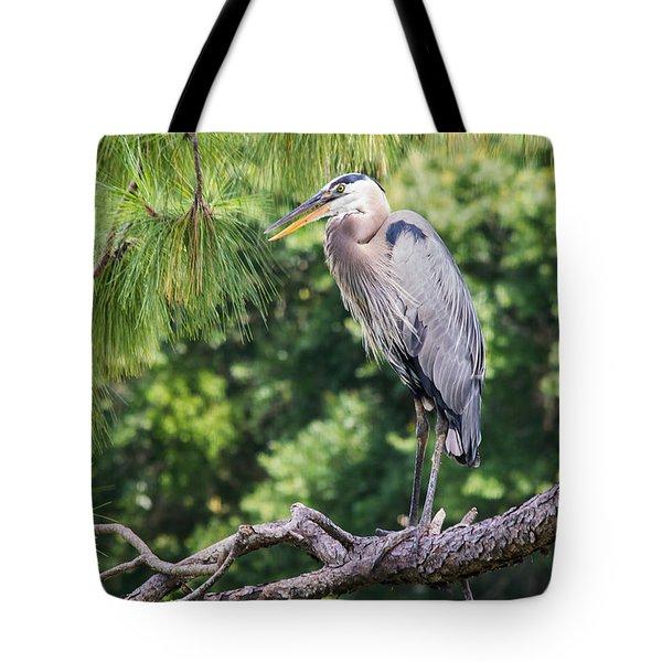 Great Blue Heron I Tote Bag