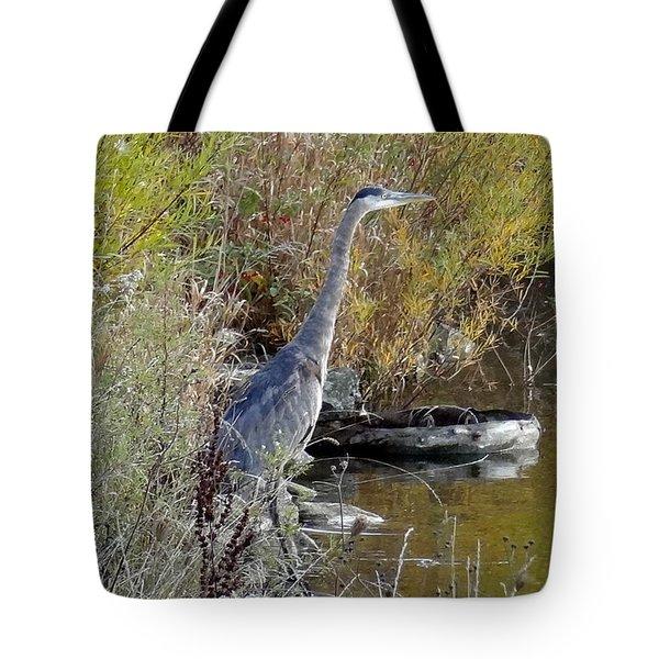 Great Blue Heron - Juvenile Tote Bag