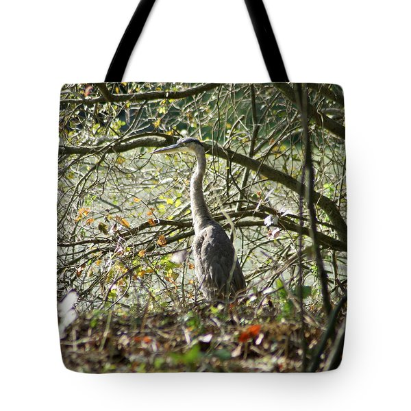 Tote Bag featuring the photograph Great Blue Heron by Karen Silvestri