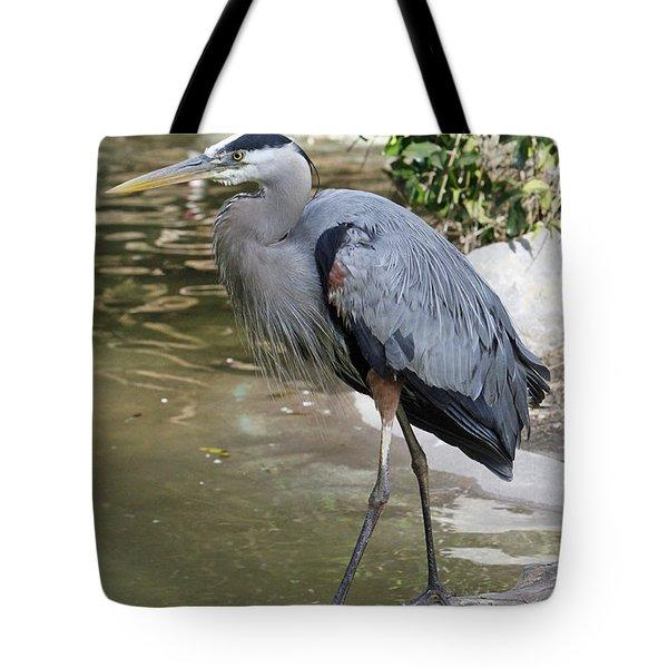 Great Blue Heron Tote Bag by Shoal Hollingsworth