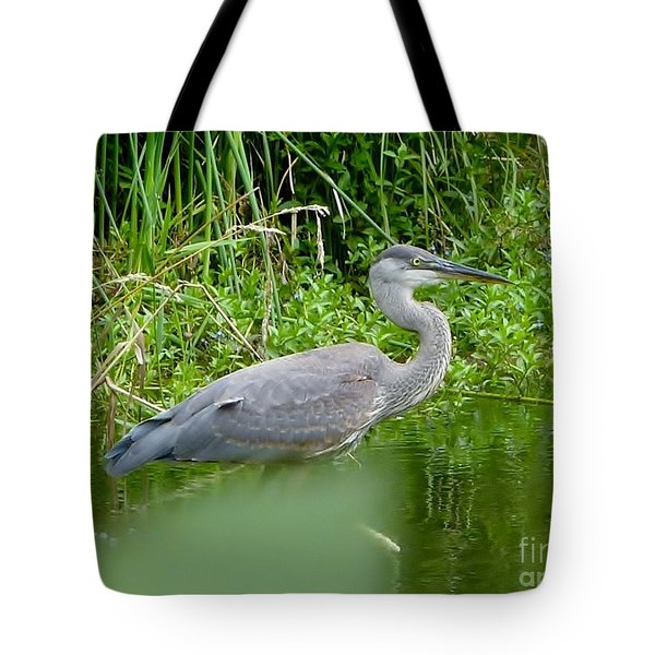 Tote Bag featuring the photograph Great Blue Heron  by Susan Garren