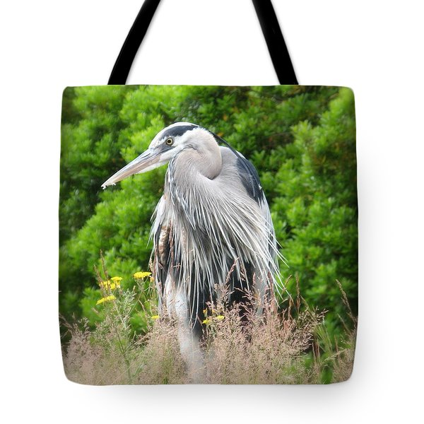Great Blue Heron Watching And Waiting Tote Bag