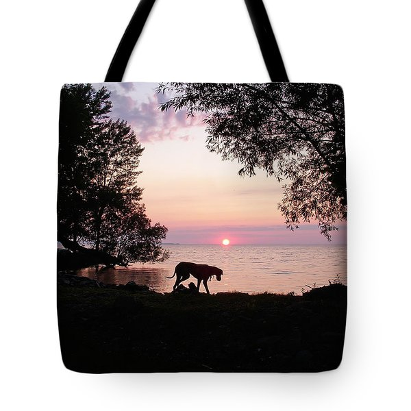 Great Dane Sunset Tote Bag by Aimee L Maher Photography and Art Visit ALMGallerydotcom