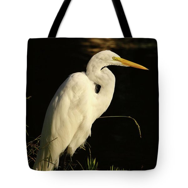 Great Egret At Morning Tote Bag by Robert Frederick
