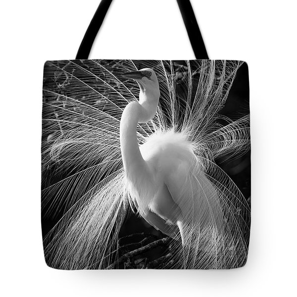 Tote Bag featuring the photograph Plumes In The Wind by John F Tsumas