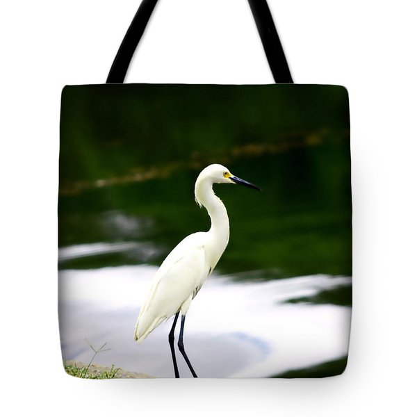 Tote Bag featuring the photograph Great Egret by Debra Forand